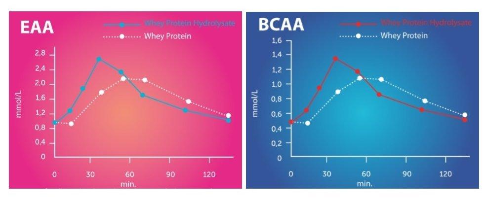 Grafico-proteine-idrolizzate