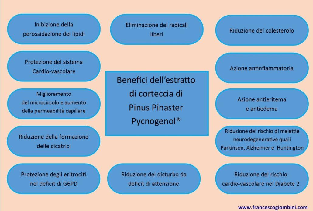 Effetti Pycnogenol